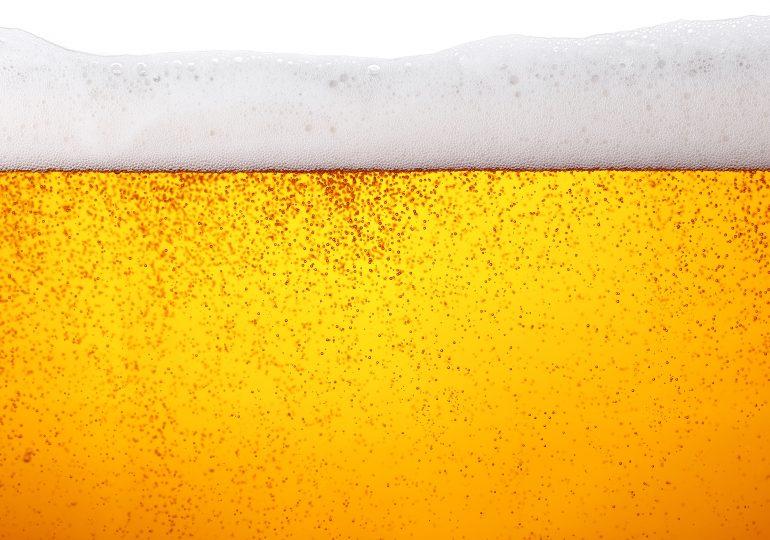 Der ultimative Bierhandtasche Vergleich [Oktober 2019]