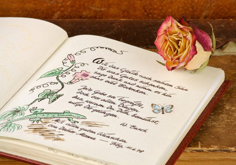Der großartige Liebeserklärung zum Ausfüllen Vergleich [Oktober 2019]