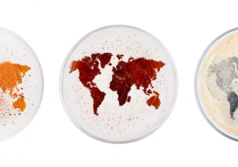 Der große Biere der Welt Vergleich [Dezember 2019]